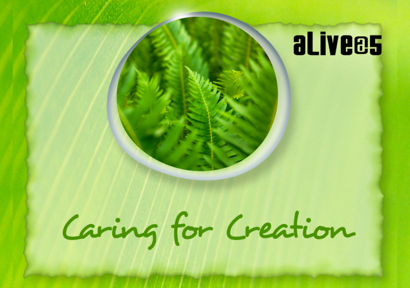 Caring-For-Creation.001